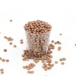 Brown Lentils 500g - Organic