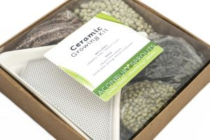 Ceramic Growing Kit from Aconbury