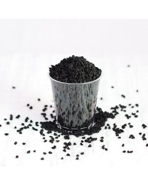 Leek Seed 100g - Organic