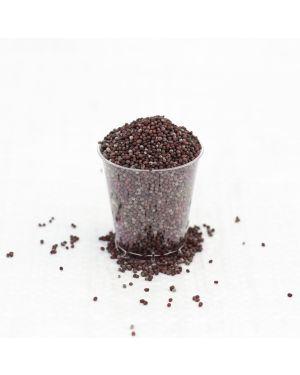 Mustard Organic Seeds