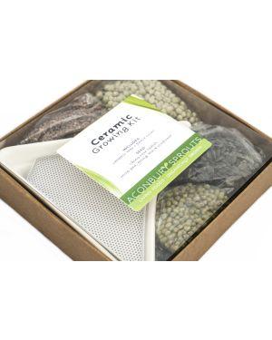 Ceramic Growing Kit from Aconbury