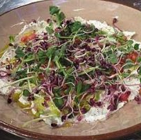 Labneh with pomegranate, sprouted seeds and shoots